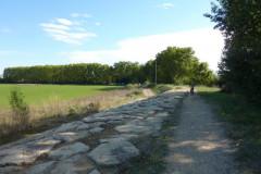 Le chemin à proxilité du château de Teillan