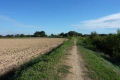 Le chemin du grand Teillan