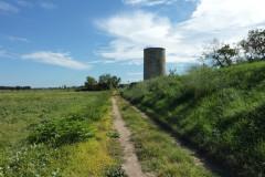 La tour après le mas