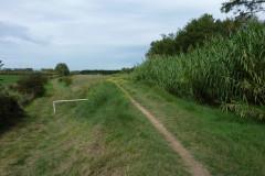 Prendre le chemin sur la digue