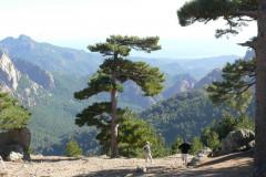Le col de Bavella situé dans le Parc Naturel Régional de Corse