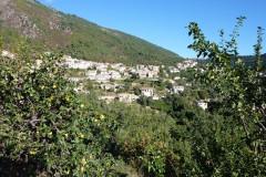 Village de Venaco