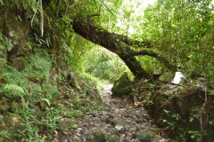 Un sentier long et abrupt qui conduit vers les cascades et le barrage