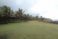 Le cap Méchant, pelouse appelée « herbe pique-fesse »