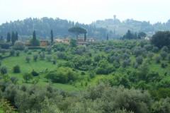 Vue depuis le jardin de Boboli