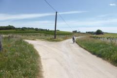 Chemin menant au mas du Petit Bourry
