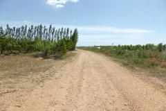 Chemin en direction de la bâtisse Scamandre